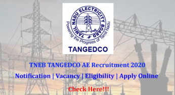 TANGEDCO Recruitment 2020 - 2900 Vacanies Apply Online